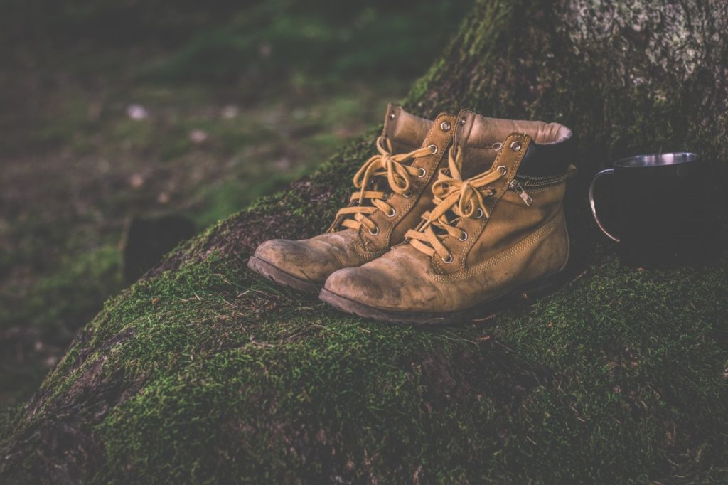 Logger boots in the market
